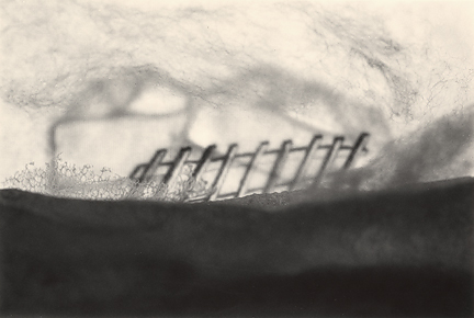 Barrier 4, 2013, toned gelatin silver print