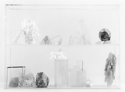 Vitrine 1, 2013, gelatin silver print, 6.5 x 8 inches