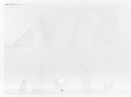 Vitrine 6, 2013, gelatin silver print, 6.5 x 8 inches